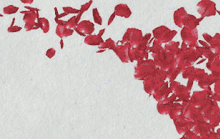 Rose petals cascading in a brilliant red.