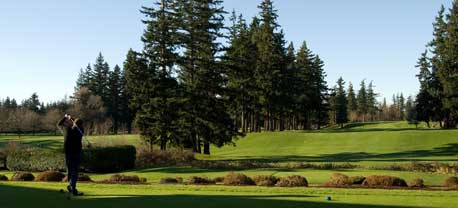 A gollfer swings as you see his view down the fairway. On both sides are pine trees and beautiful variations of green.