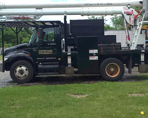This international bucket truck is part of the fleet owned by Olsen Tree Experts