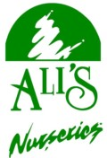 Visit Alis Nursery in Southington CT for all your landscaping needs