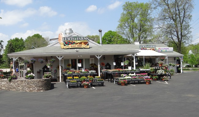Lewis Farms Southington CT 06489