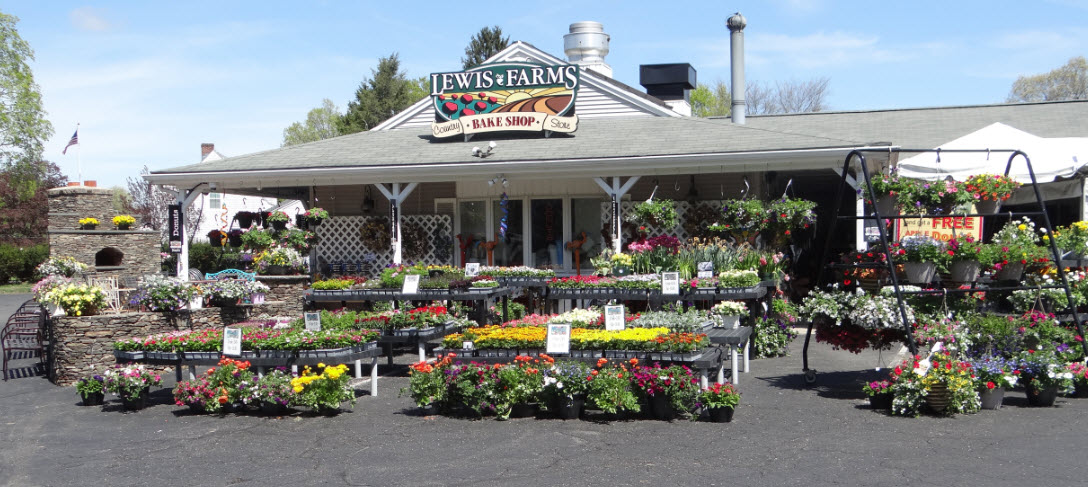 Stop into Lewis Farms in Southington CT