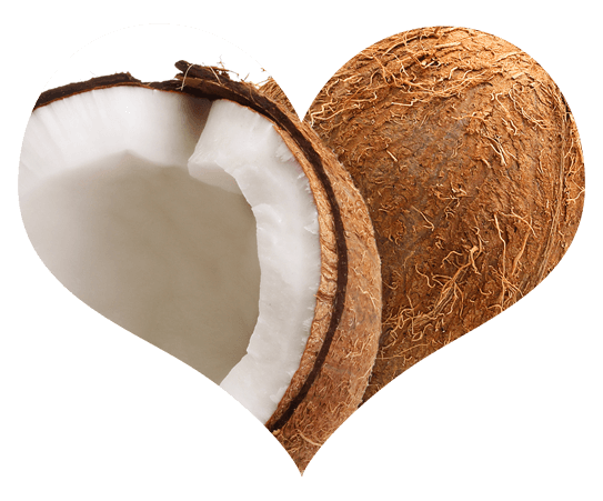 Coconut in Heart