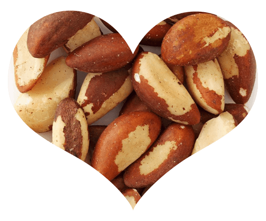 Brazil Nuts in Heart