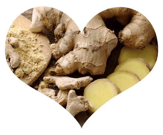Ginger Root in Heart