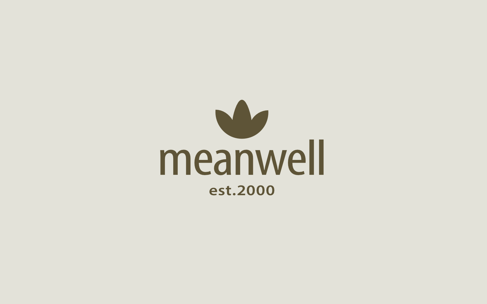Meanwell Identity