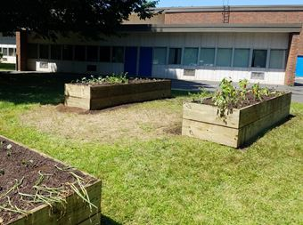 Photo of school garden at Flanders Elementary School, Southington, CT