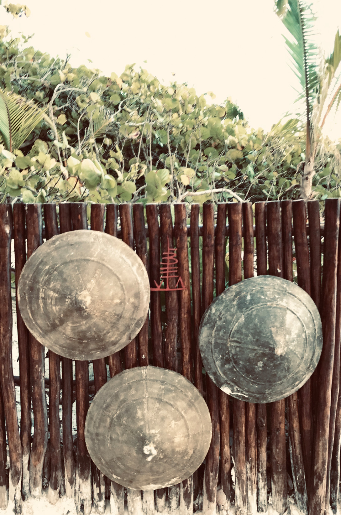wood, fence, shields, logo, palm, trees, bushes, green, sand, beach, tulum, libelula, glamping