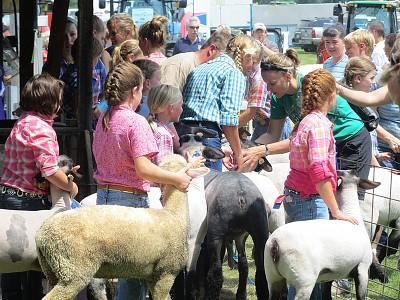 Lodi Agricultural Fair - WI