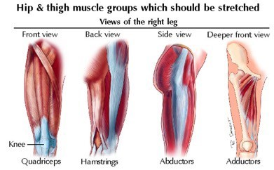 Physical Therapy for Muscle Strains In The Thigh