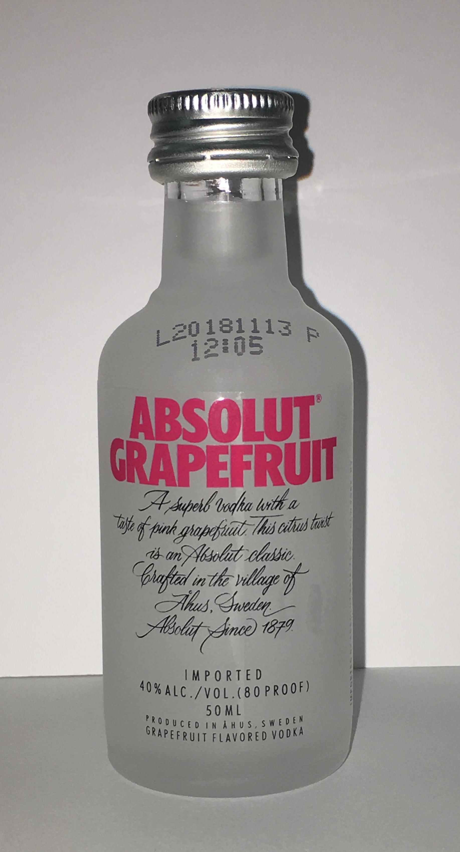 Vodka Mini Bottles Spirit Favors