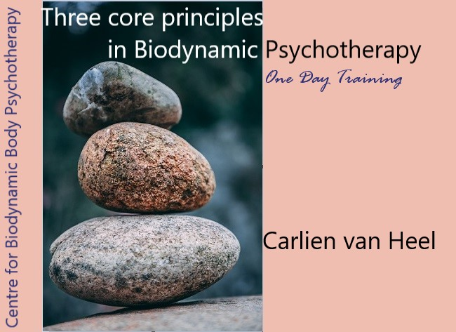 centre for biodynamic body psychotherapy - three core principles in biodynamic body psychotherapy