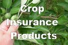 Find out about crop insurance products