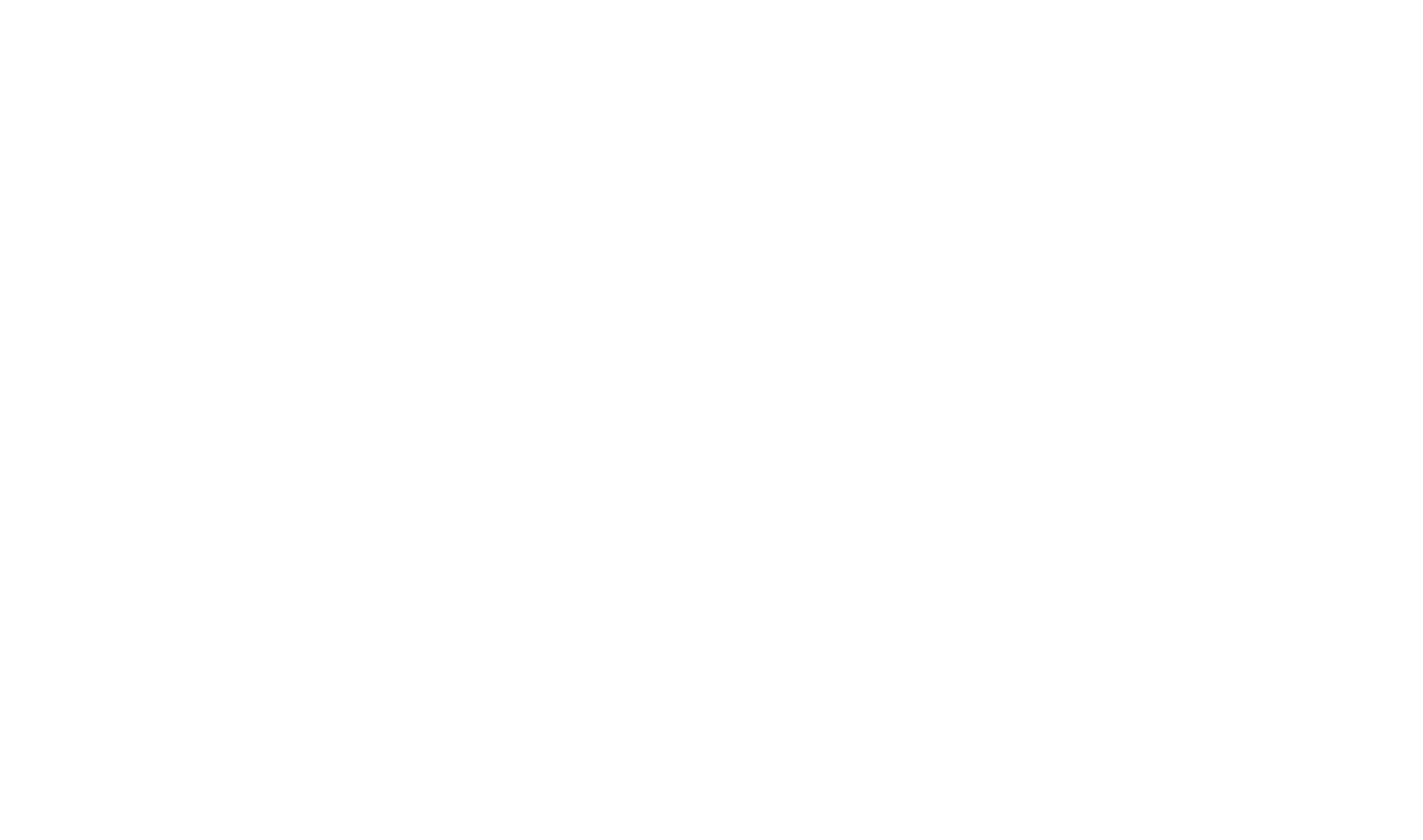 New Trails Logo